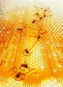 Микросхема и пчелы