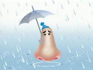 Нос под зонтом