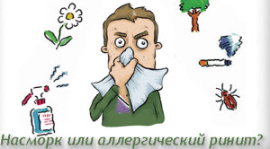 Насморок или аллергия