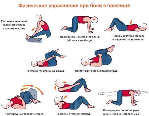 uprazneniya_spina