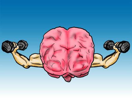 качаем мозг