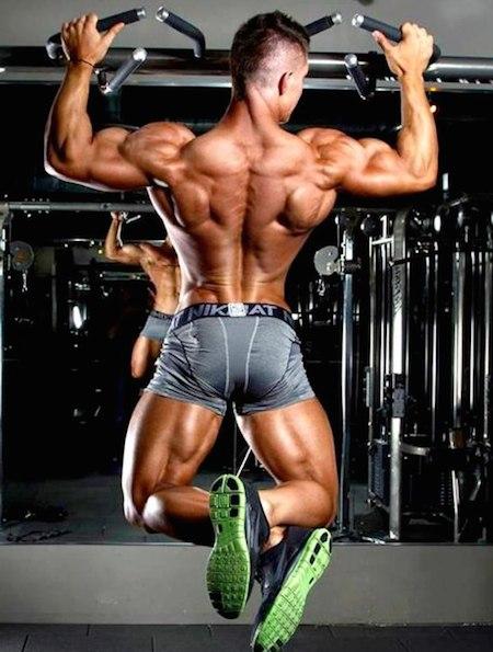 красивые мускулы